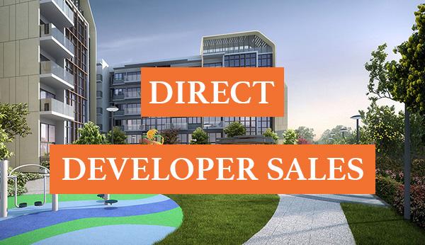 The Gazania Direct Developer Sales